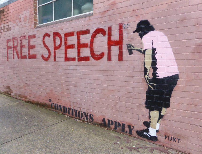 Ochrana svobody projevu v době pandemie